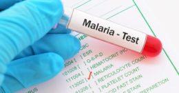 Malaria: causas, sintomas, y tratamiento