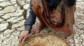 OMS advertirá sobre efectos del cambio climático en la salud