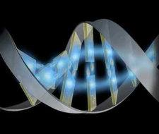 Posibles bases genéticas en el cáncer de colon