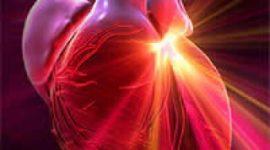 Epidemiología y factores de riesgo de aterosclerosis