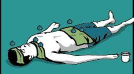 Manejo del síndrome febril del niño mayor