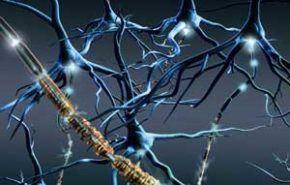 Curso clínico de la esclerosis múltiple