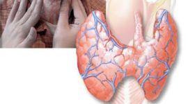 Rol de las hormonas tiroideas en el crecimiento