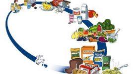 Vida moderna y alimentación