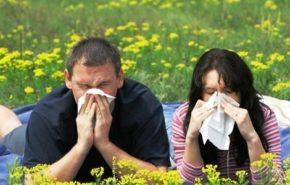 Cuidado alérgicos, este año aumentarán los niveles de polen