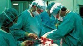 Uno de cada 25 trasplantes en España se realizan en niños