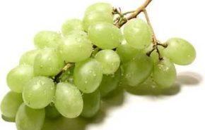 Las uvas ayudan a mantener la juventud