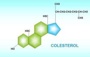 Bajar el colesterol en 5 semanas con una nueva dieta