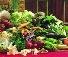 En los vegetales podemos encontrar hormonas muy valiosas