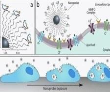 El cáncer de pulmón podría ser detectado con un Test de Nanopartículas