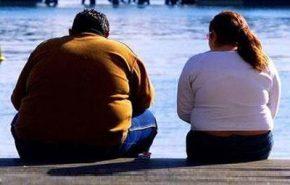 Todo sobre la obesidad