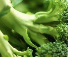 Las propiedades anticancerosas del brócoli