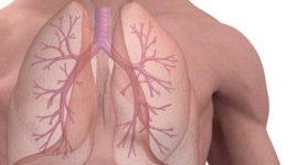 Fármacos que previenen la fibrosis pulmonar