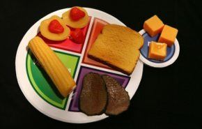 Nueva guía de alimentación para enfrentar la obesidad