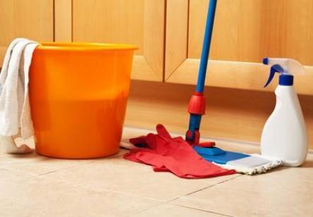 Picaduras de pulgas s ntomas y tratamiento blogmedicina - Acabar con las pulgas en casa ...