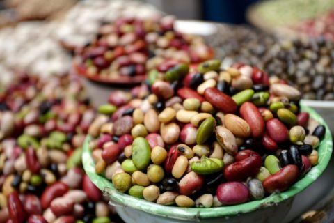 Alimentos transgenicos alimentos pasivos activos