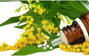 Diferencias entre la homeopatía y la fitoterapia