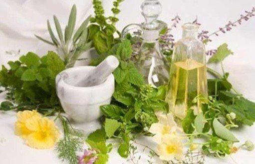 remedios-plantas_thumb.jpg