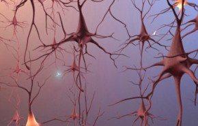 Nuevo tratamiento para el derrame cerebral