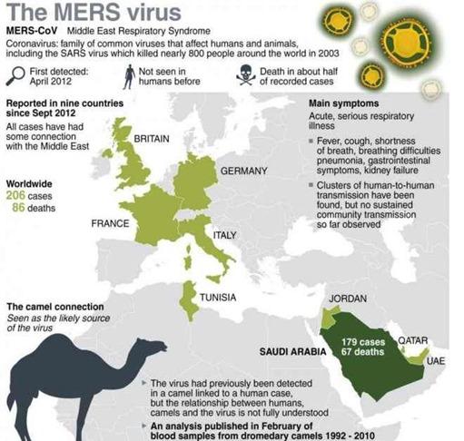 virus-MERS_thumb.jpg