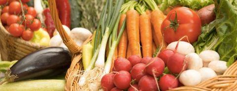 Cuales son diferencias verduras y hortalizas