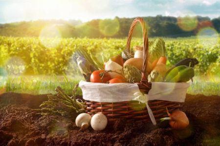 Verduras hortalizas