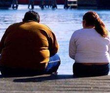 EL IRB buscaría prefármacos contra la diabetes y obesidad