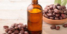 ¿Qué es el aceite de jojoba?