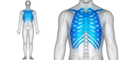 sindrome-tietze-columa-cuerpo-humano