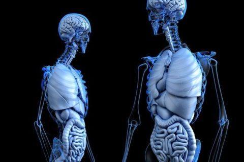 buscapina-que-es-radiografia