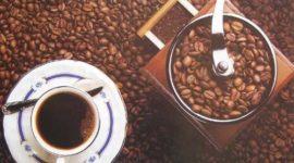 La cafeína, tiene efectos distintos en hombres y mujeres