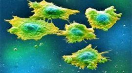 Detección de células cancerosas en la sangre