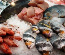 ¿Cómo evitar la intoxicación con mariscos?