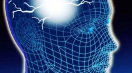 Universidad de Concordia desarrolla método para detección de epilepsia