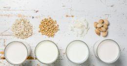 ¿Cuántos tipos de leche hay?